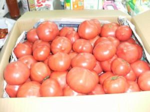 ピチピチトマト