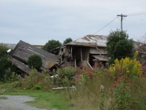 倒壊したまま放置された家屋。生い茂った雑草が時の経過を物語る