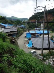 西原村大切畑にて7月に撮影